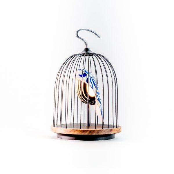 Jingoo Feathered China